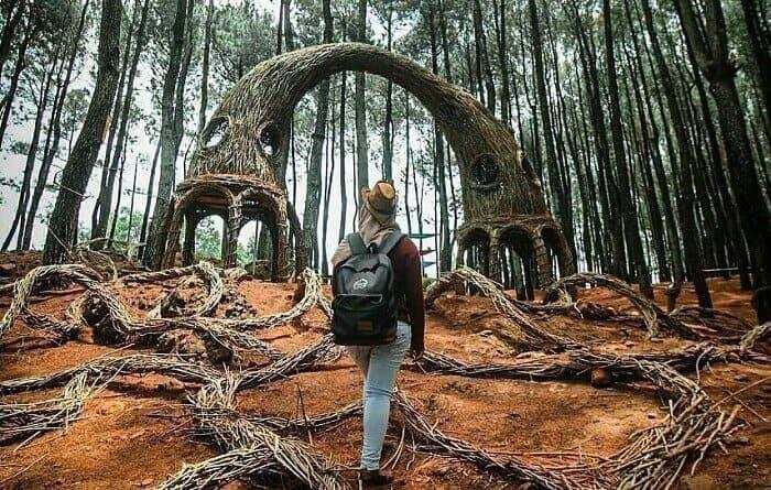 Menjelajah Hutan via Kemerahanid