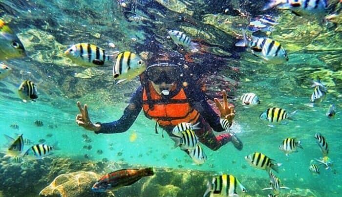 Snorkeling Kukup Beach