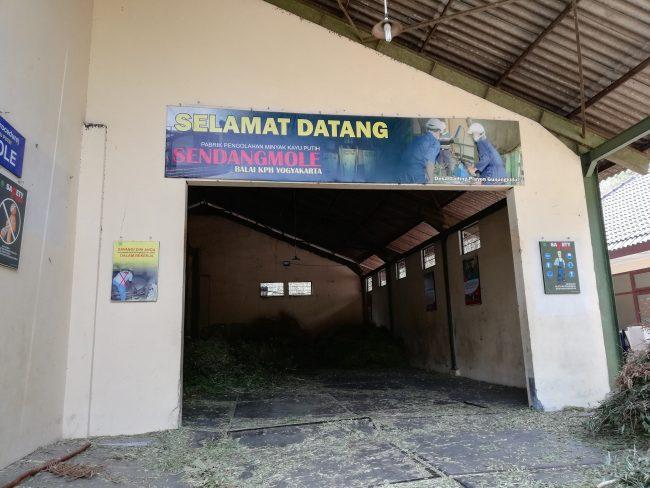 Sendang Mole via IG @gpswisata