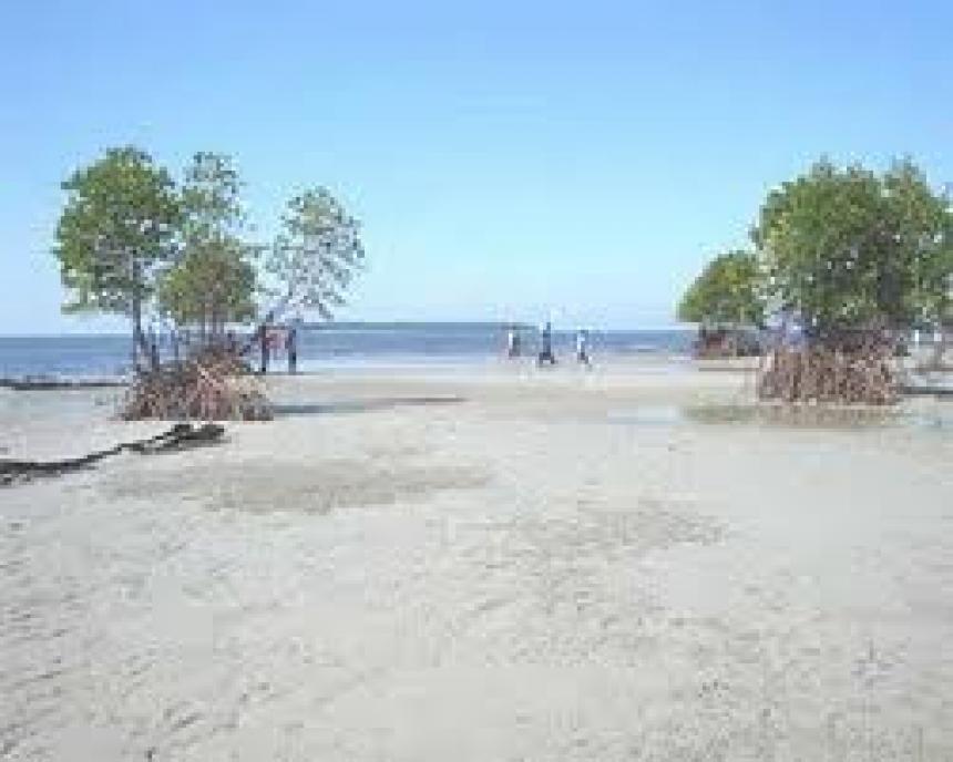 Pantai Matang Ulim Idi Cut
