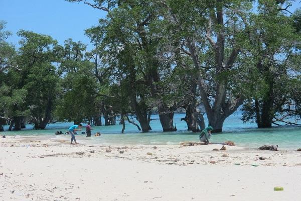 Pantai Pasir Putih Langsa via wisataindonesiaraya