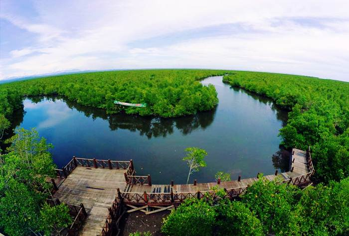 Taman Mangrove Langsa via IG @rulyadimunandar