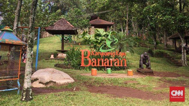 Kampung Kopi Banaran via Cnnindonesia