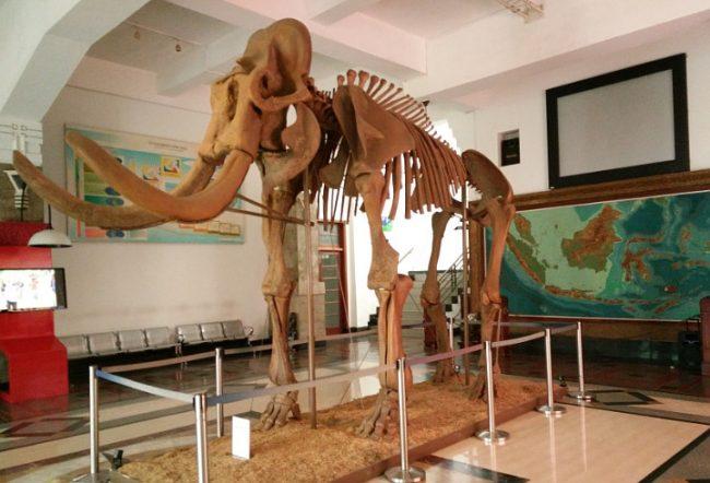 Museum Geologi Bandung via Wowkeren