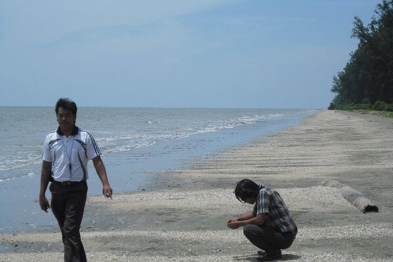 Pantai Idi Cut