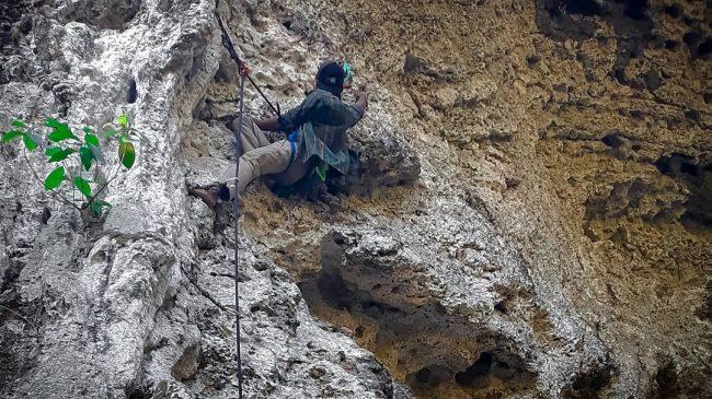Rock Climbing Gua Kiskendo via IG @agungsetiaji028