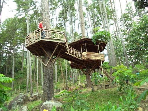 Taman Hutan Raya Pocut Meurah Intan via Acehprovgoid