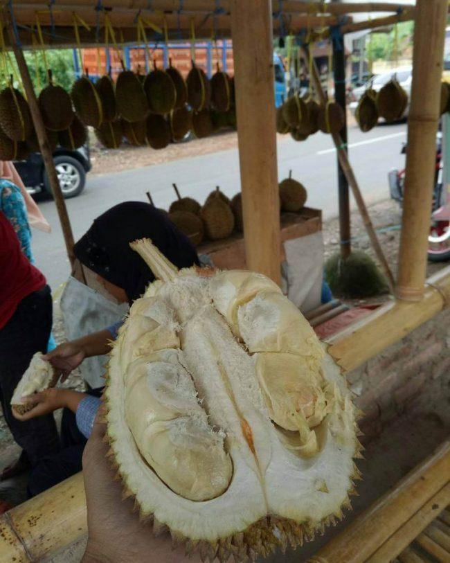 Durian via IG @infomjlk