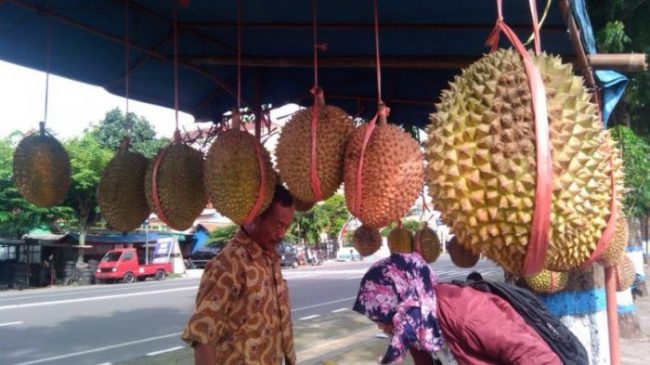 Durian via Tribunnews