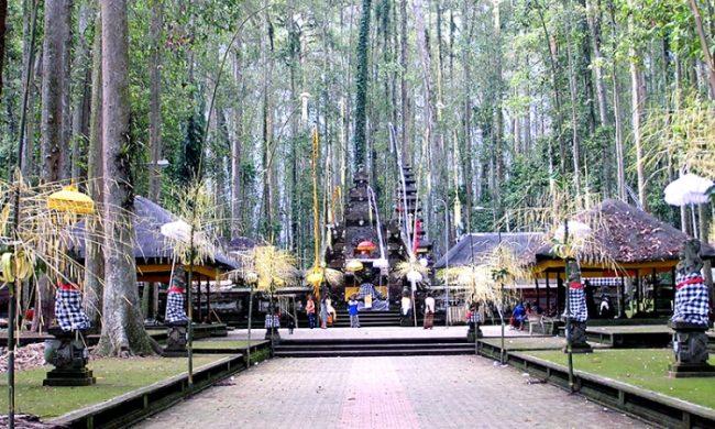 Sangeh-Monkey-Forest-via-Pesona-Wisata-Indonesia