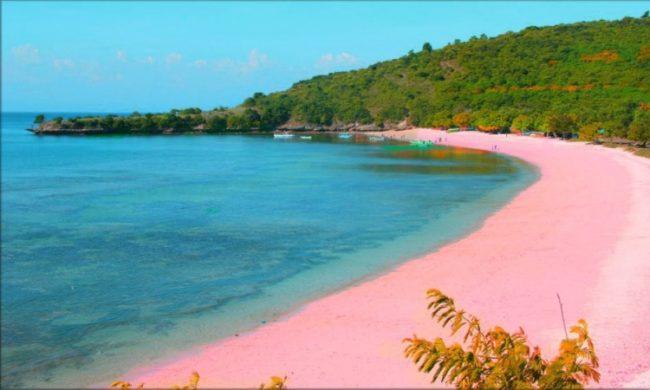 Wisata Pantai Pink