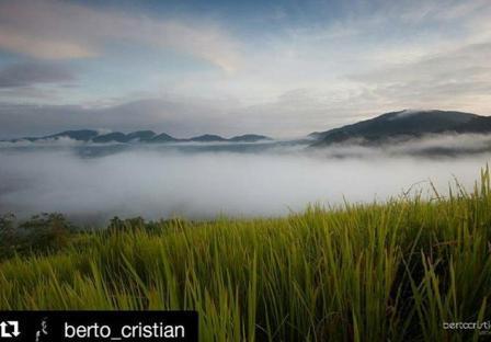 Bukit Kedungkang via IG @berto_cristian