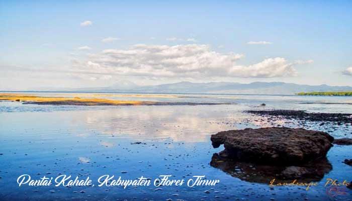 Pantai Kahale- Tempat Wisata Di Flores Timur