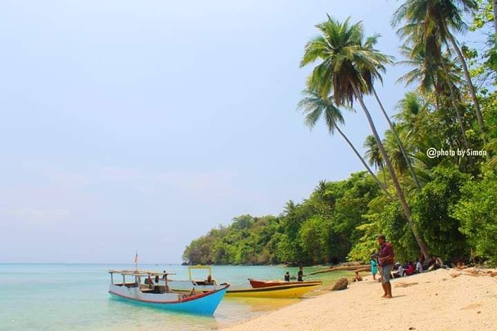 Pantai Tanjung Bunga Foto Simon - Tempat Wisata Di Flores Timur