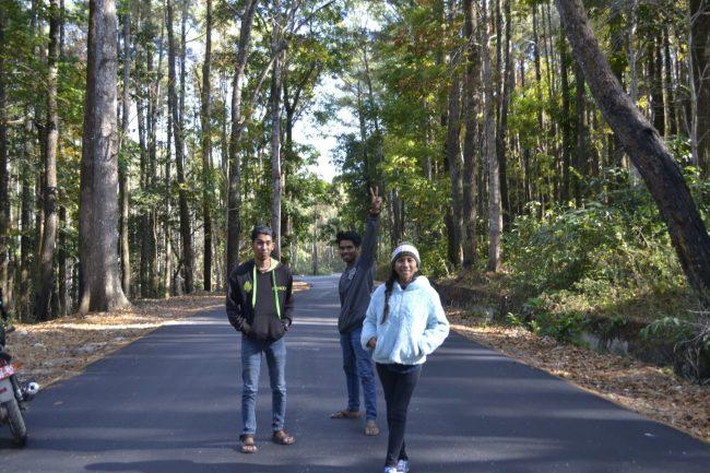 Wisata Hutan Tarandu - Tempat wisata di sumba tengah