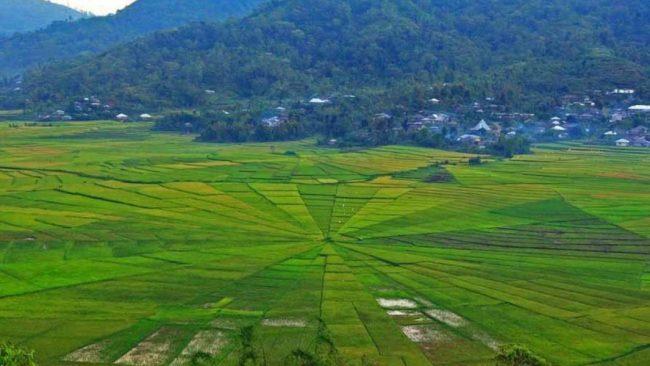 Wisata Lembor Manggarai Barat - tempat wisata di Manggarai Timur