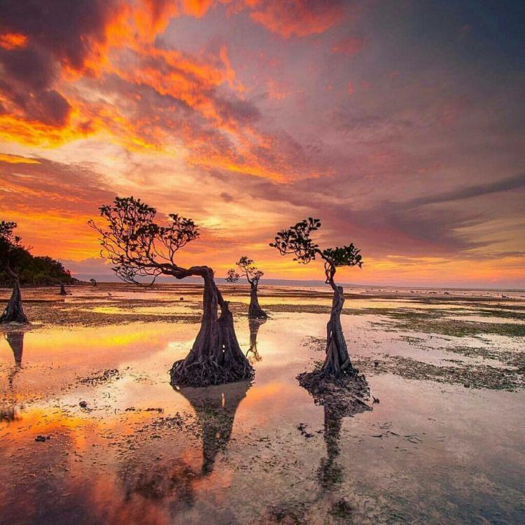 Wisata Pantai Walakiri via Sola ai