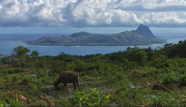 Wisata Pulau Mules via IG @esperanca.putri