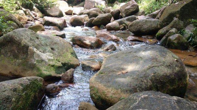 Air Pauh via Tribun Pontianak - Tempat Wisata Di Kayong Utara