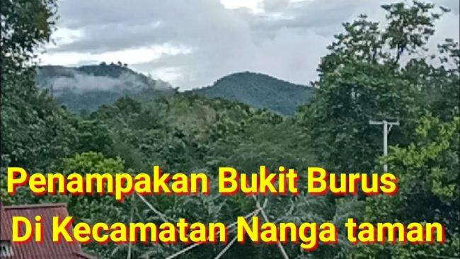 Bukit Burus Nanga Taman via Youtube
