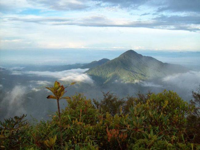 Gunung Cabang - Tempat Wisata Di Kayong Utara
