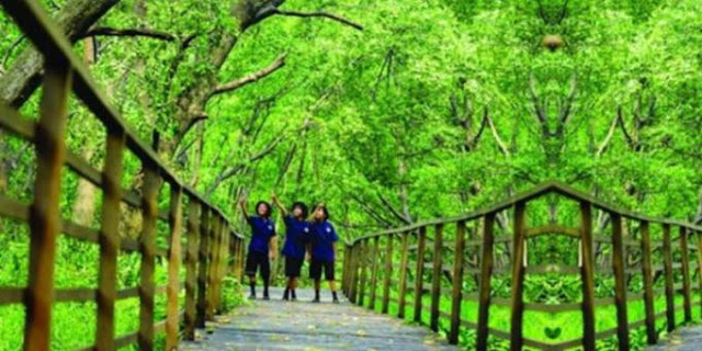 Hutan Kota Untan via Linkeventcom