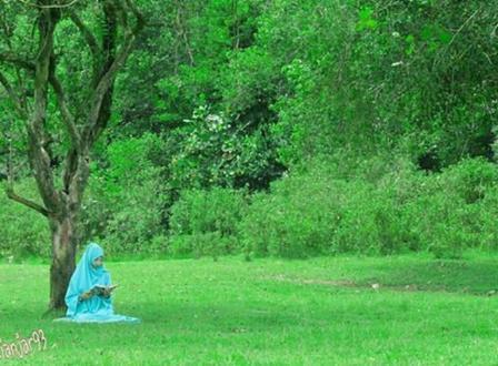 Padang Rumput Desa Sidomulyo