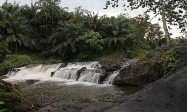 Pandayangan via Globalnusantara - Tempat Wisata Di Labuhanbatu Selatan