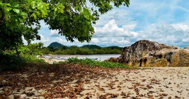 Pantai Pasir Mayang via Wartakayong.wordpresscom