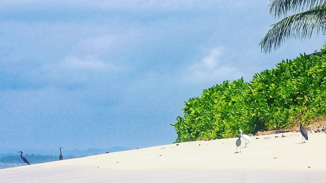 Pasir Putih Pulau Impian via IG @explore_pulau_nias - tempat wisata di Nias Selatan