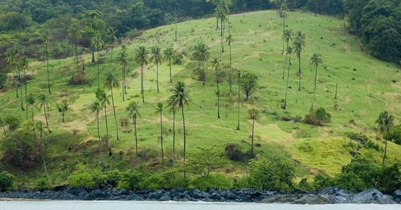 Pulau Serutu