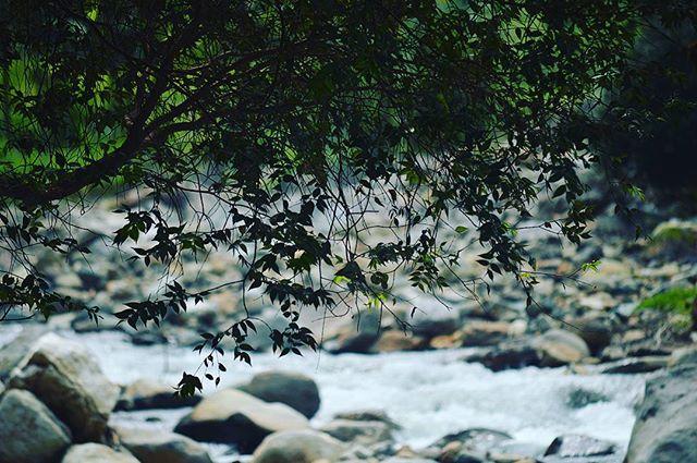 Sungai Sampuran via tripelaketobacom