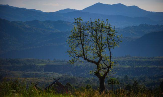 Gunung Sibual – Buali via Pesona Travel - Tempat Wisata di Tapanuli Selatan