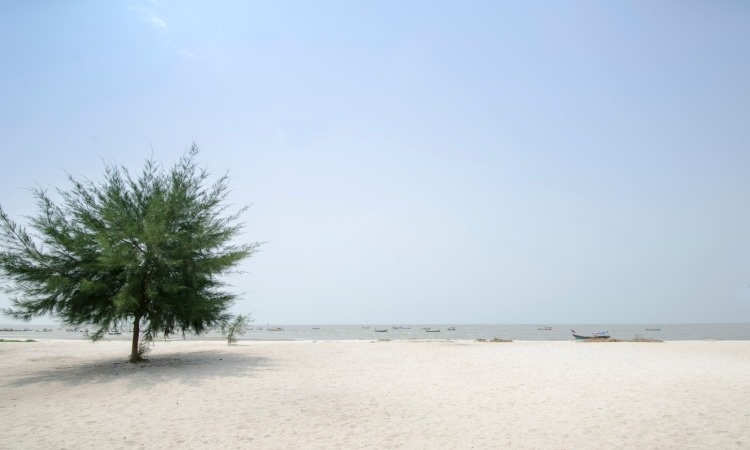 Pantai Sri Mersing via explorasi