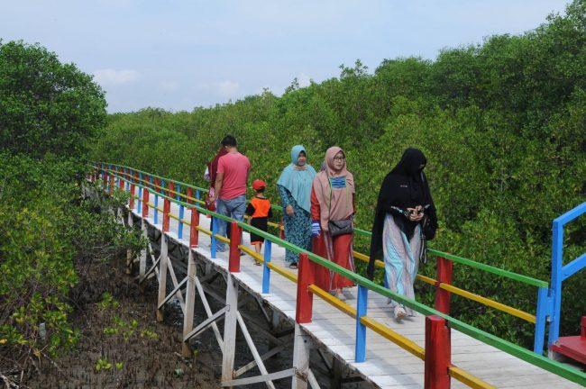 Ekowisata Mangrove Sicanang
