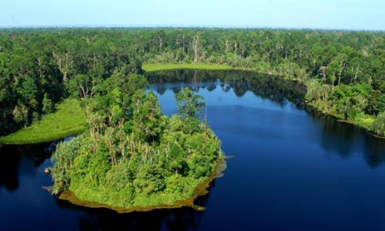 Danau Pulau Padang - Tempat Wisata Di Kepulauan Meranti