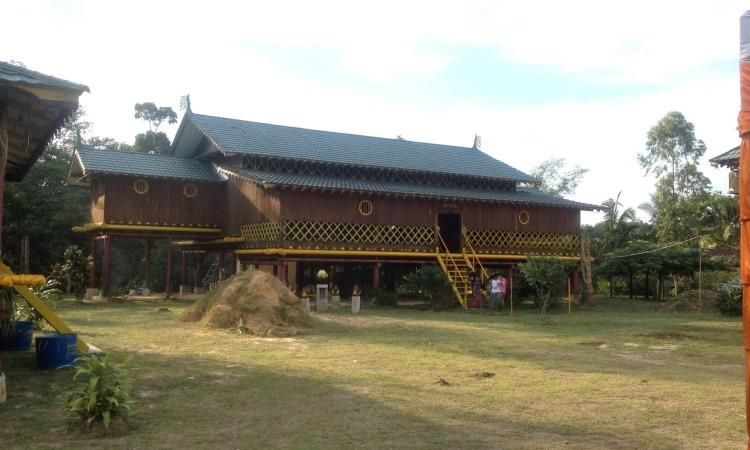 Hutan Adat Kesumbo Ampai via RiauberdaulatqqHutan Adat Kesumbo Ampai via Riauberdaulat