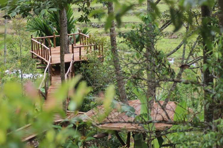 Family Garden via kaluhou.blogspotcom