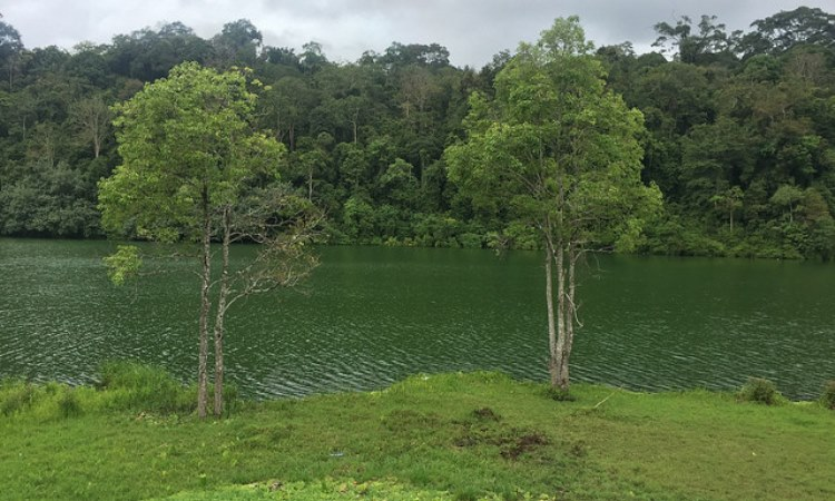 Taman Nasional Bukit Duabelas via Traverse