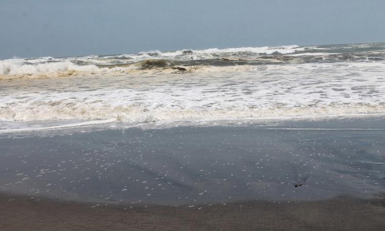 Ciujung Beach via Syadhahanita.blogspotcom