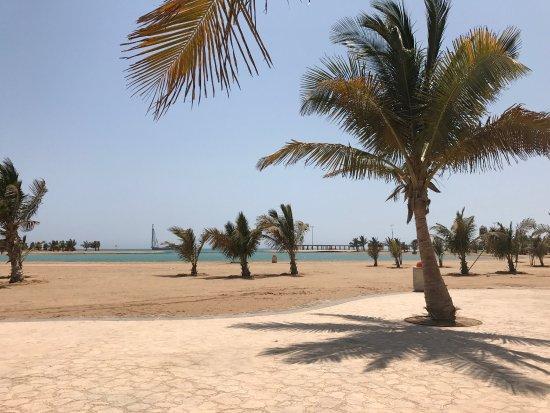 Yanbu Al-Bahr Beach via Tripadvisor