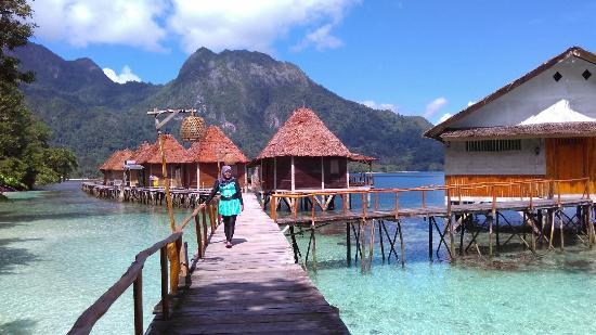 Ora Beach Eco Resort via Tipadvisor