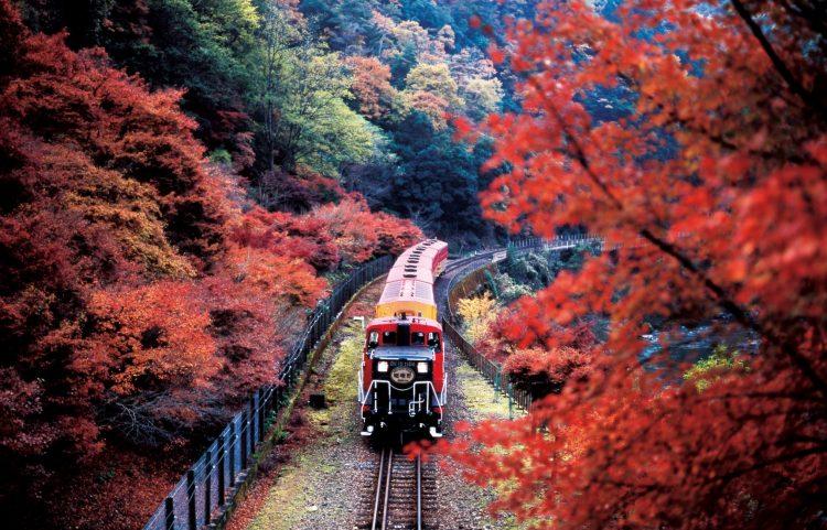 Sagano Romantic Train via All About Japan - Tempat Wisata di Kyoto