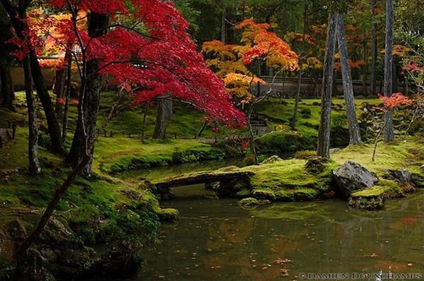 Saiho-ji via Inside Kyoto