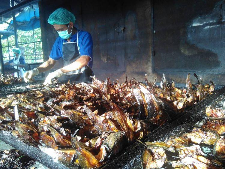 Ikan Sale Medan via Ukmkotamedan